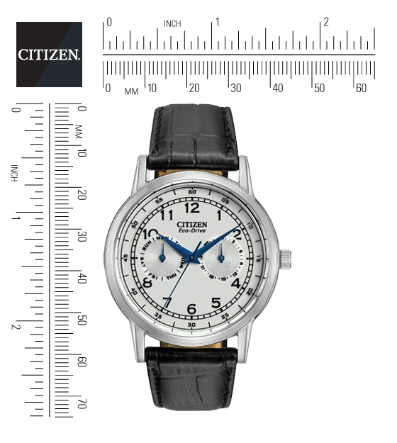 citizen eco watch setting instructions