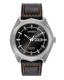 citizen eco drive watch wr100 instructions