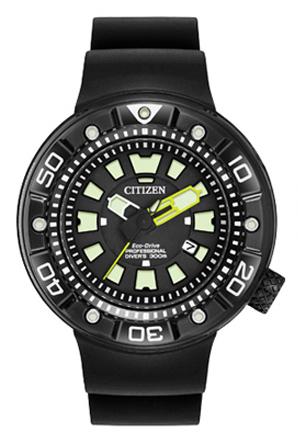 Promaster Diver | BN0175-19E